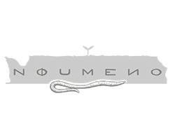noumeno_vini_logo_verona
